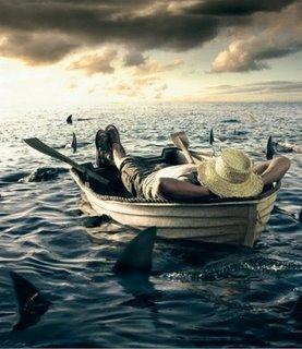 Algunos tiburones para mantenernos frescos y en forma